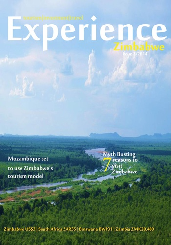 digital magazine Experience Zimbabwe publishing software
