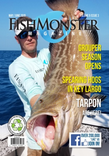 digital magazine FishMonster Magazine publishing software